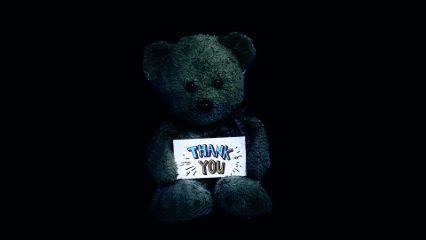 teddybear friend people thankyou night