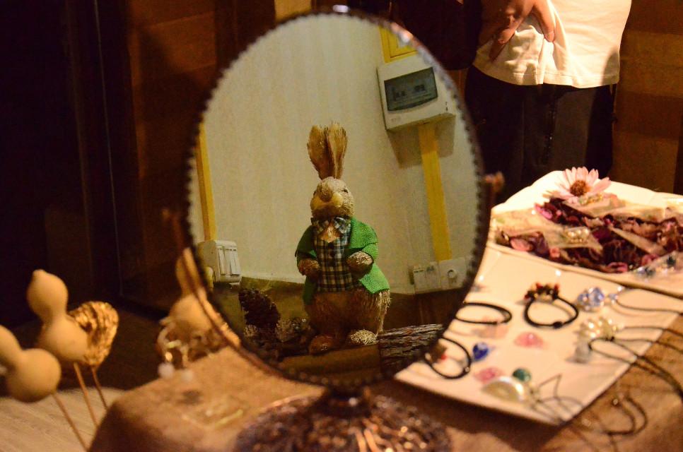 #FreeToEdit  hello Mr .rabbit.